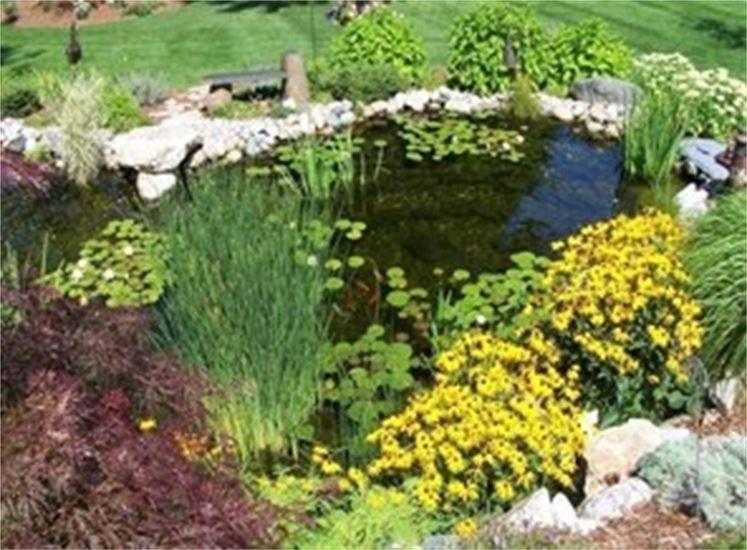 Garden Ponds Pondless Waterfalls