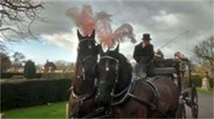 Febryar 3rd. 2016 - The horse drawn hearse for a 99 & 7 months woman.