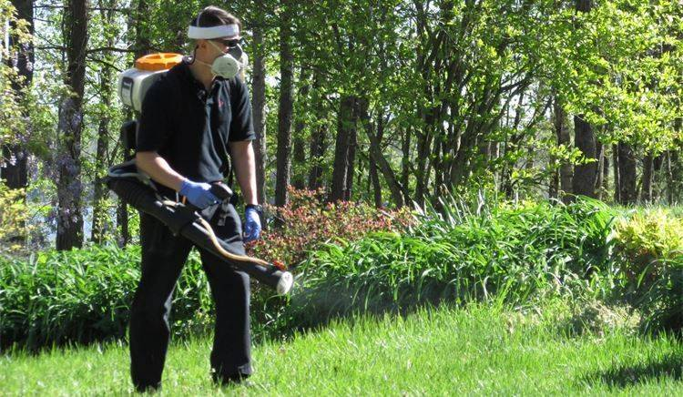 Mosquito Control, Mosquitoes, Mosquito Disease, Mosquito Spray