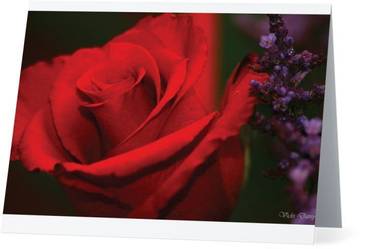 "Product: Horizontal Folded Note Cards - 5.5""x4""  Identification #: 9FV0J-63A14-5B4"