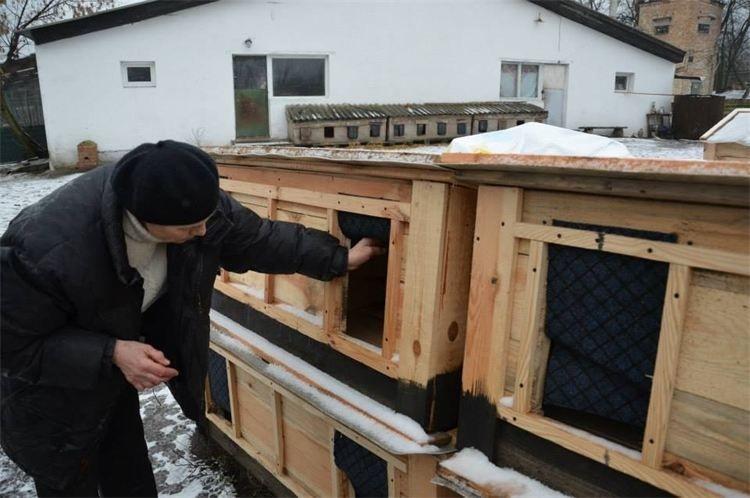 White Paw Organisation Hütte ohne Schild3