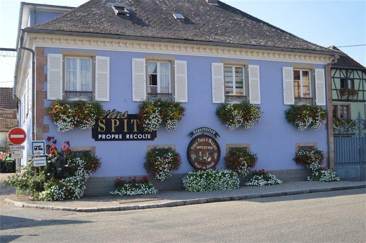 maison chambres d'hôtes sur route des vins d'alsace