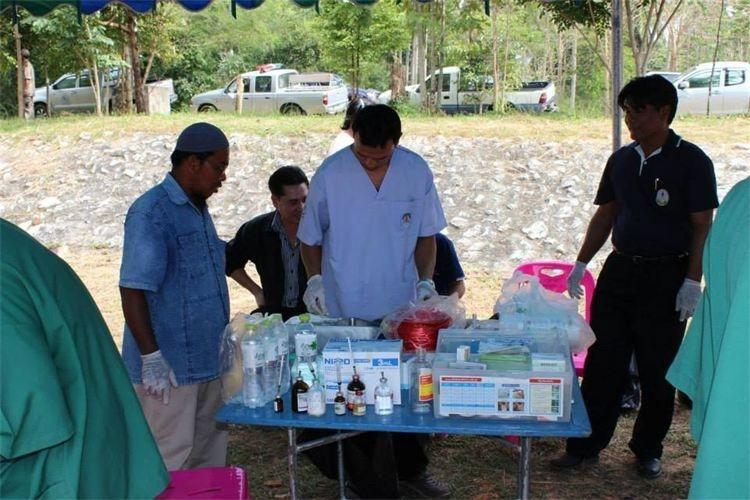 hundehilfe thailand op2