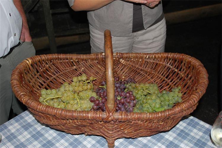 Raisins Craquants et fruités