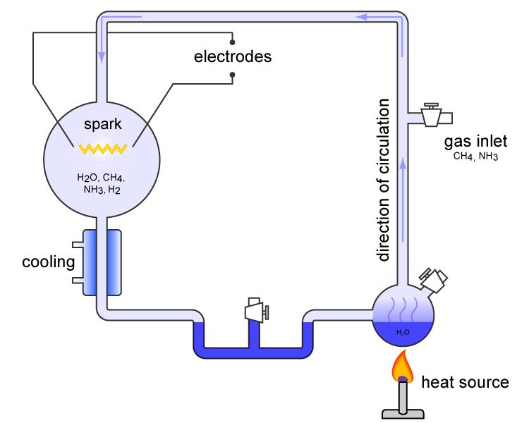 Miller-Urey Experiment, Organic Molecules, WIMB, War is my business