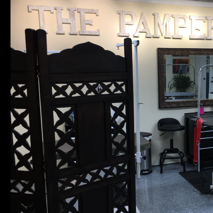 Cat and Dog grooming in Brentwood.