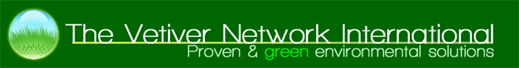 vetiver network logo