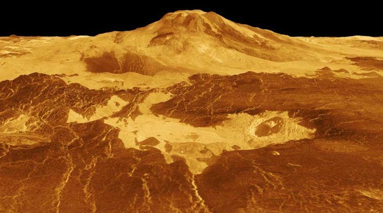 Y a-t-il une vie à la dérive dans les nuages de Vénus