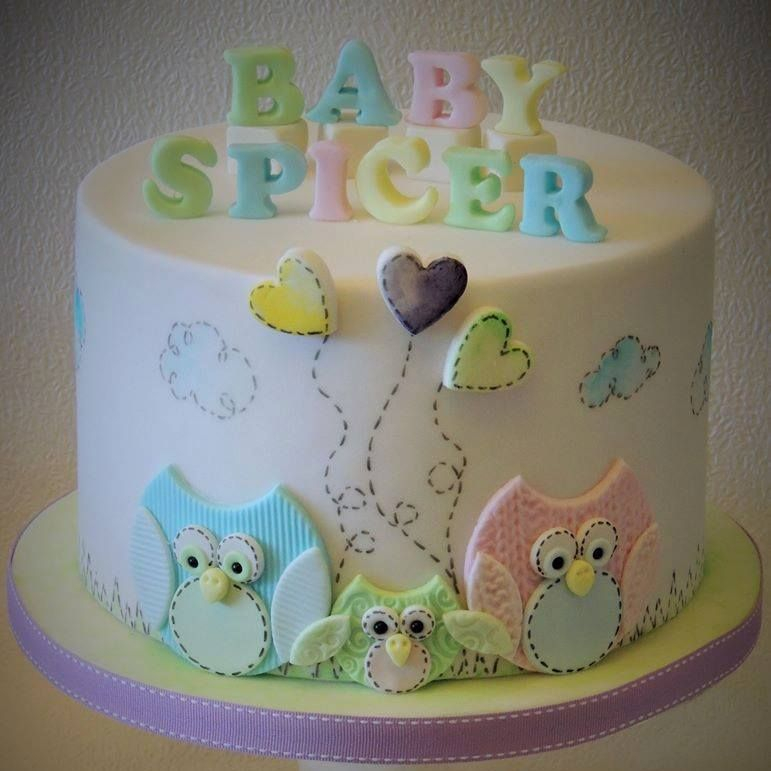 Baby Shower Birthday Novelty Owl Cake Hand Paint