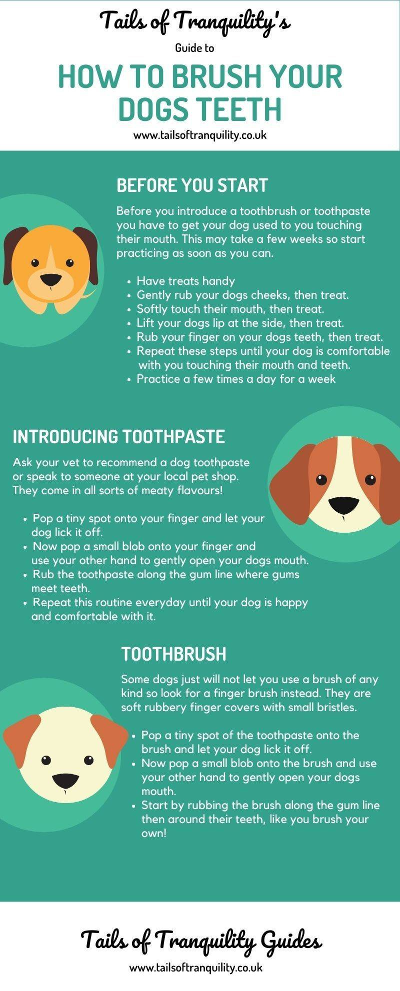 Guide to brushing your dogs teeth