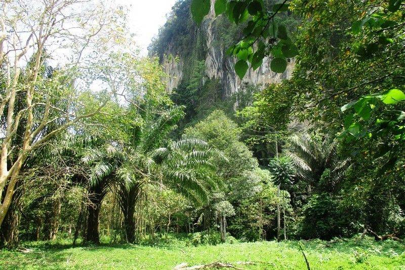 Cliff view land for sale in Chong Plee, Ao Nang