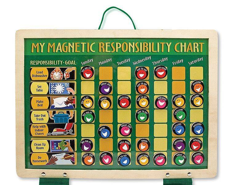 magnetic responsibility