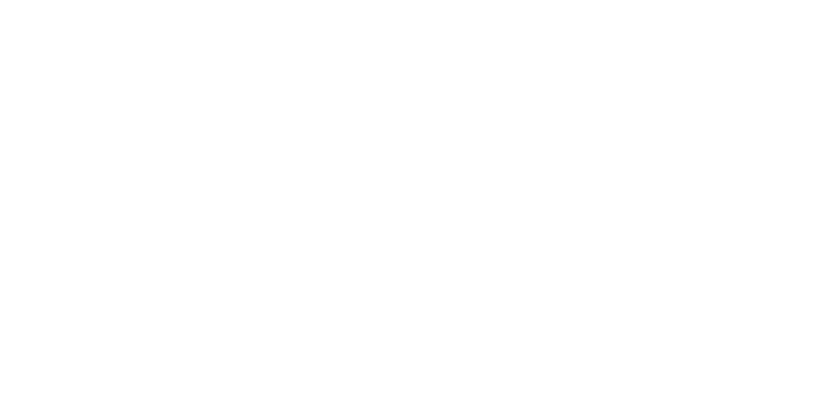 Australasian Society for the Study of Brain Impairment (ASSBI)