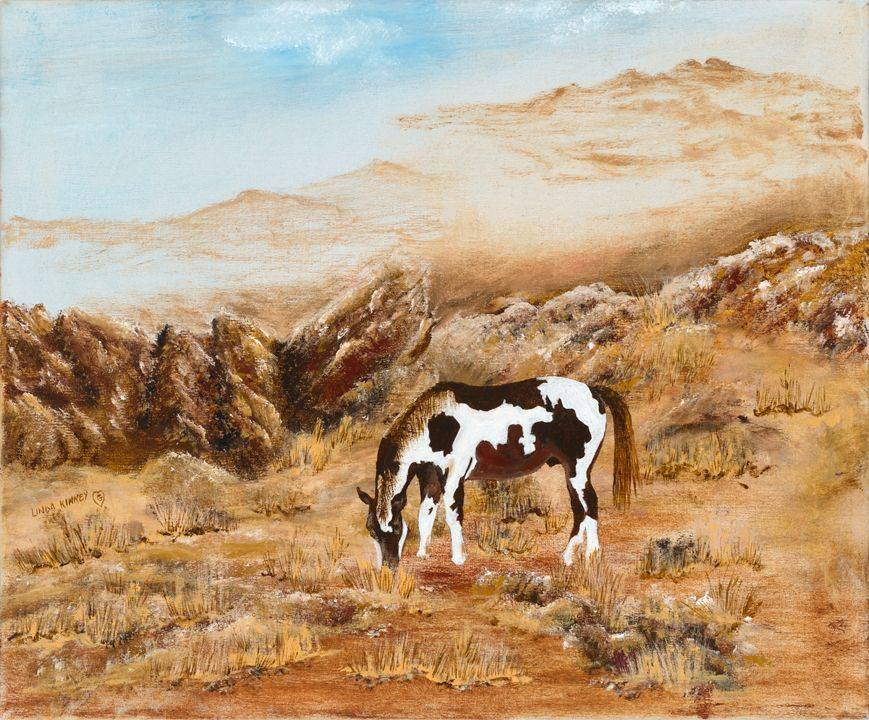 Pinto, Horse, Mountains, Grazing, Rocks, Rugged, Brown, Rusty, Hills