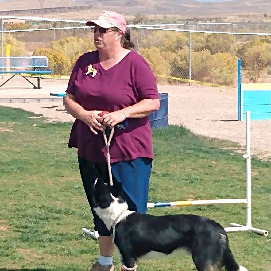 Festival Country K9s agility trainer