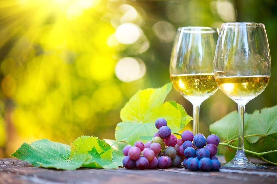 Wine tasting events Napa Valley CA, Transportation, private driver, Sonoma Wine Tasting, Napa WIne Tour.