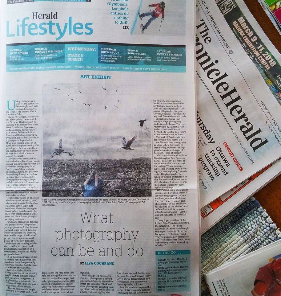 Chronicle Herald Exhibit Review February 2018