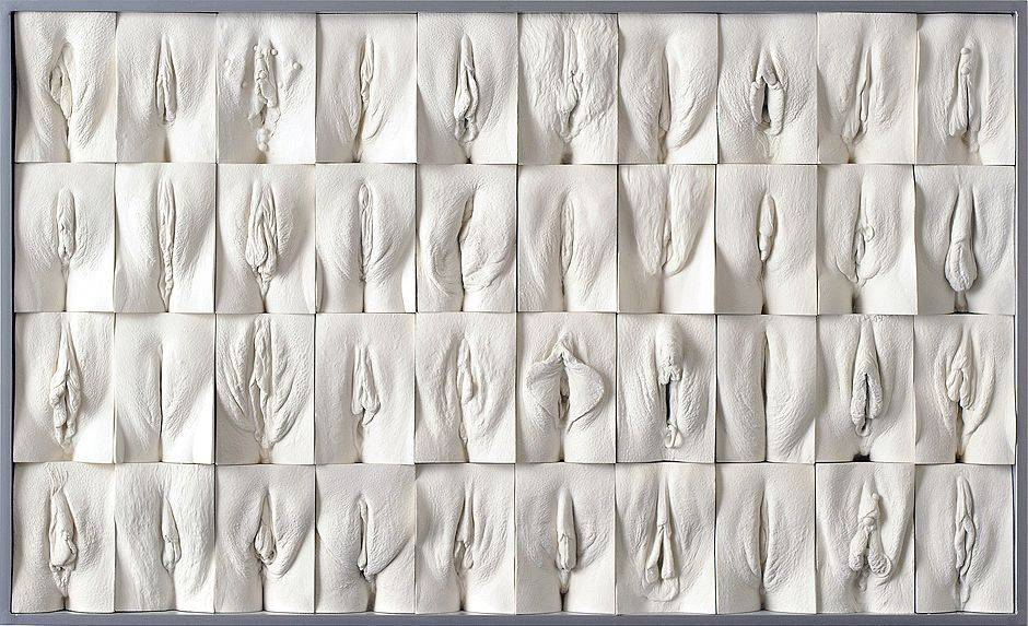 A wall of 40 plaster cast yonis of all different shapes and sizes