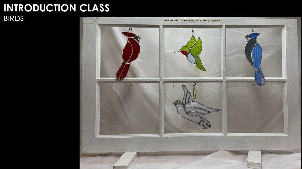 Introduction Class - Birdss