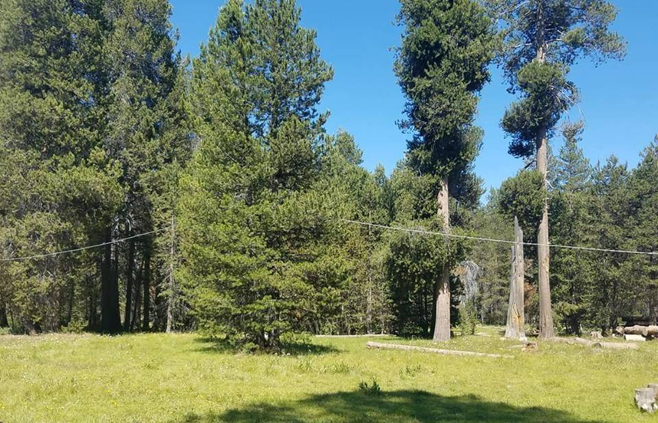 Minarets Pack Station Campground