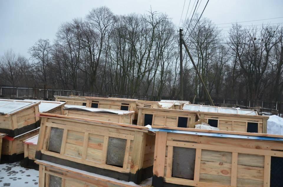 White Paw Organisation Hütte ohne Schild1
