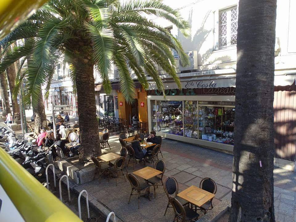 palm trees, p&o cruises, ajaccio, corsica, france, mediterannean, holiday, french cafe, coffee shop, cafe