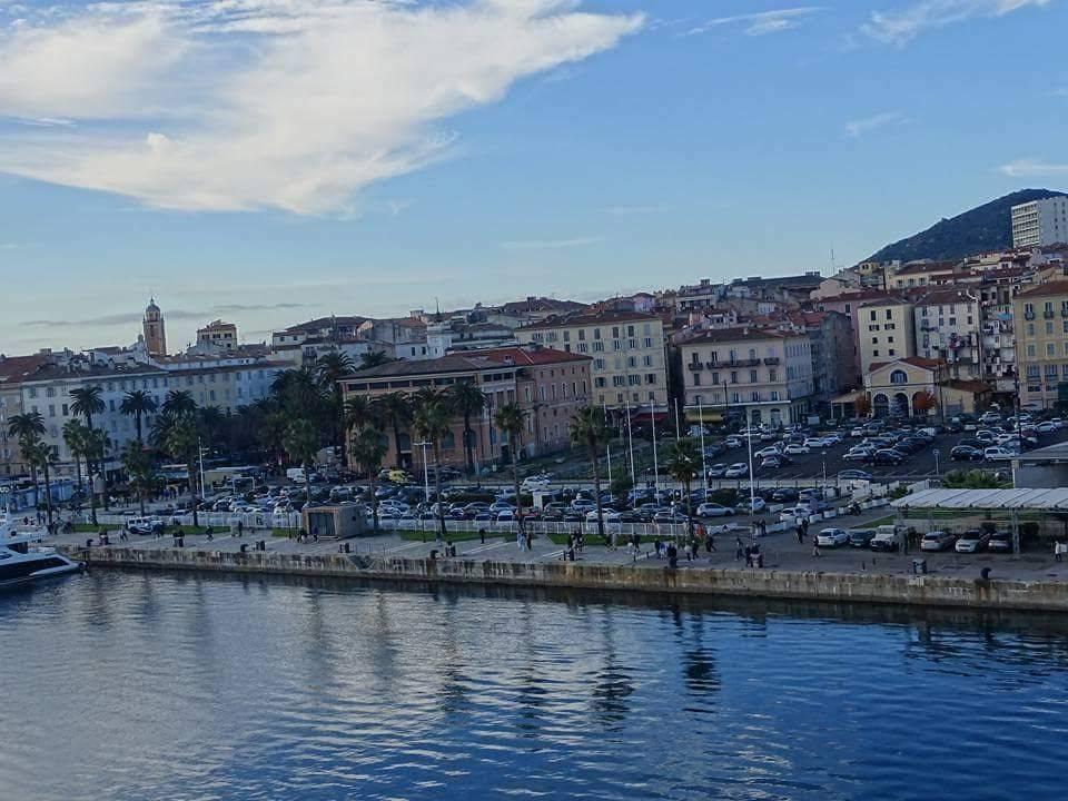 palm trees, p&o cruises, ajaccio, corsica, france, mediterannean, holiday, riviera lifestyle