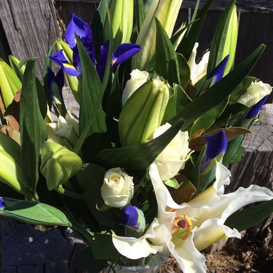 Launceston Florist for roses, flowers, or plan wedding florals in Westbury and Launceston, North East, TAS