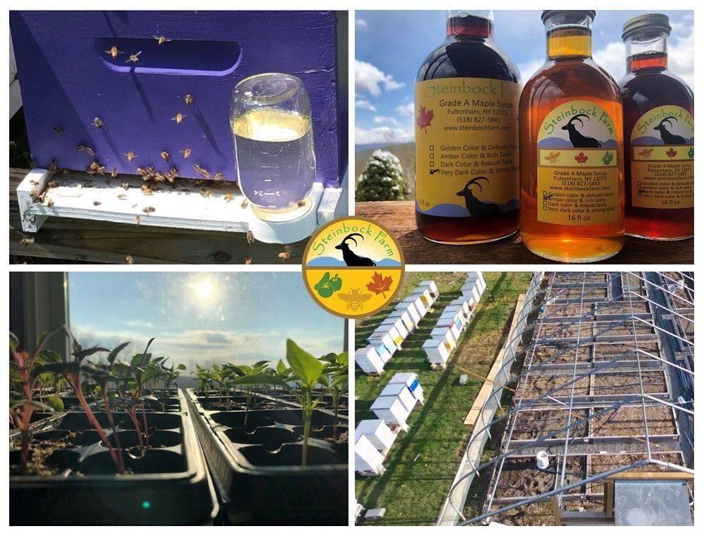 Steinbock Farm Spring 2020
