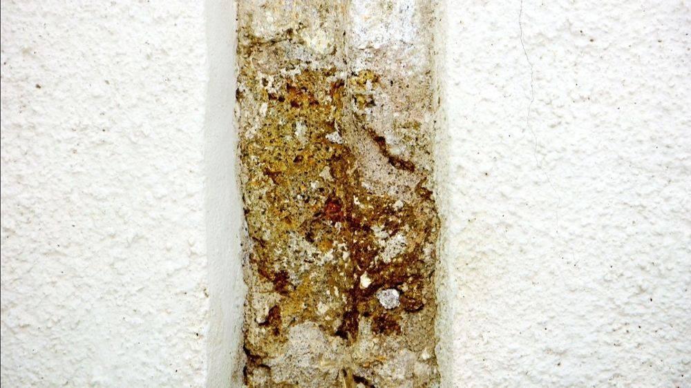 Mold spots