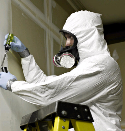 Mold Inspection Fremont CA