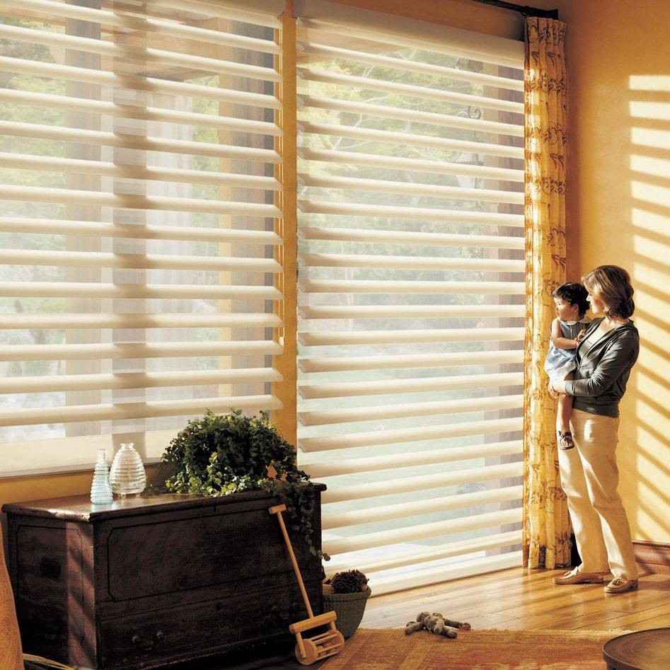 Silhouette Shades are just one of the full line of Hunter Douglas products offered by Just Right Blinds & Shutters. Check our blog, The Buzz on Blinds or the blog below for more information and tips on window treatments for your home.