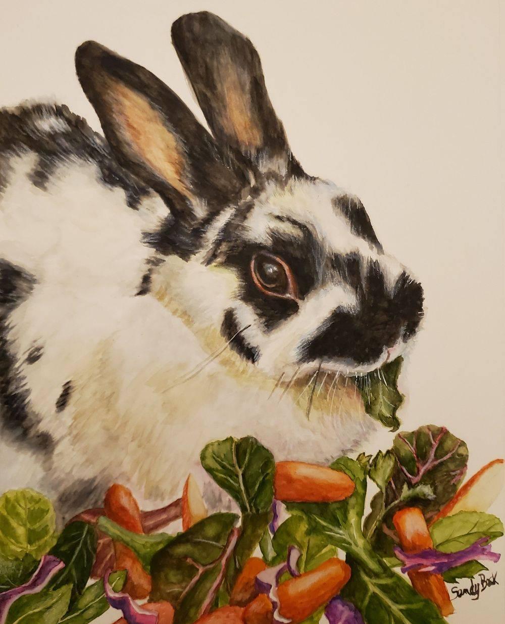 pet portrait, rabbit, polish rabbit, bunny art
