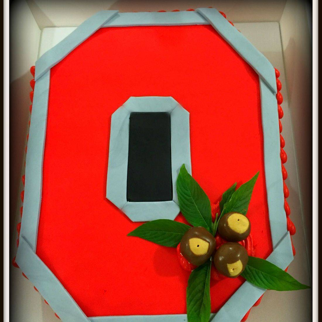 Ohio State Buckeyes Grooms Cake