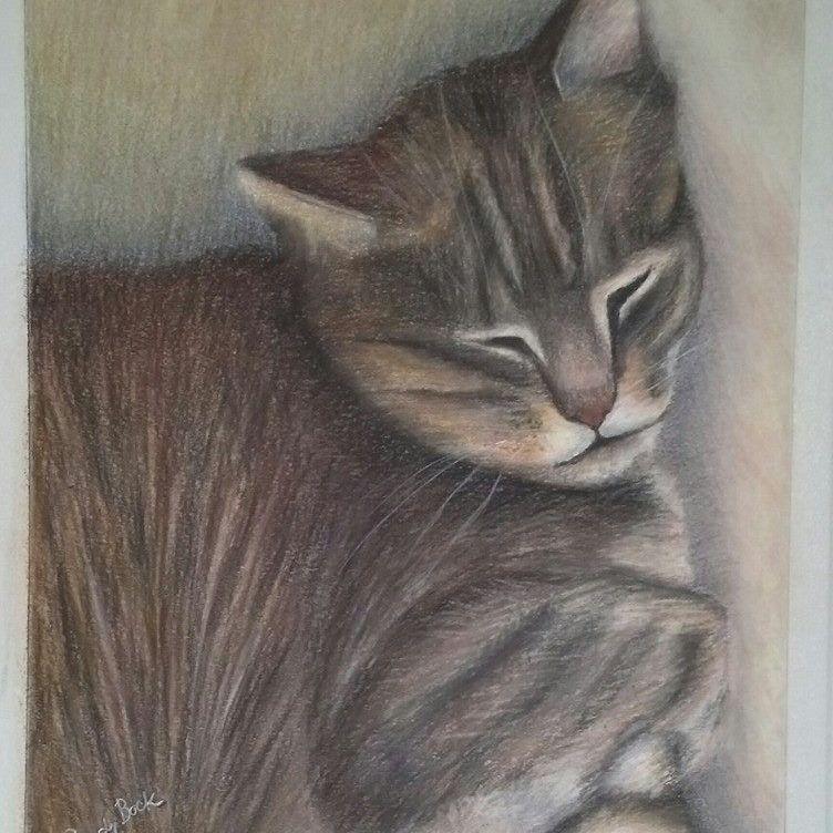 cat, memorialm pet portrait, pastel