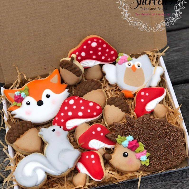 Iced Cookies Biscuits woodland fox toadstool hedgehog squirrel owl acorn