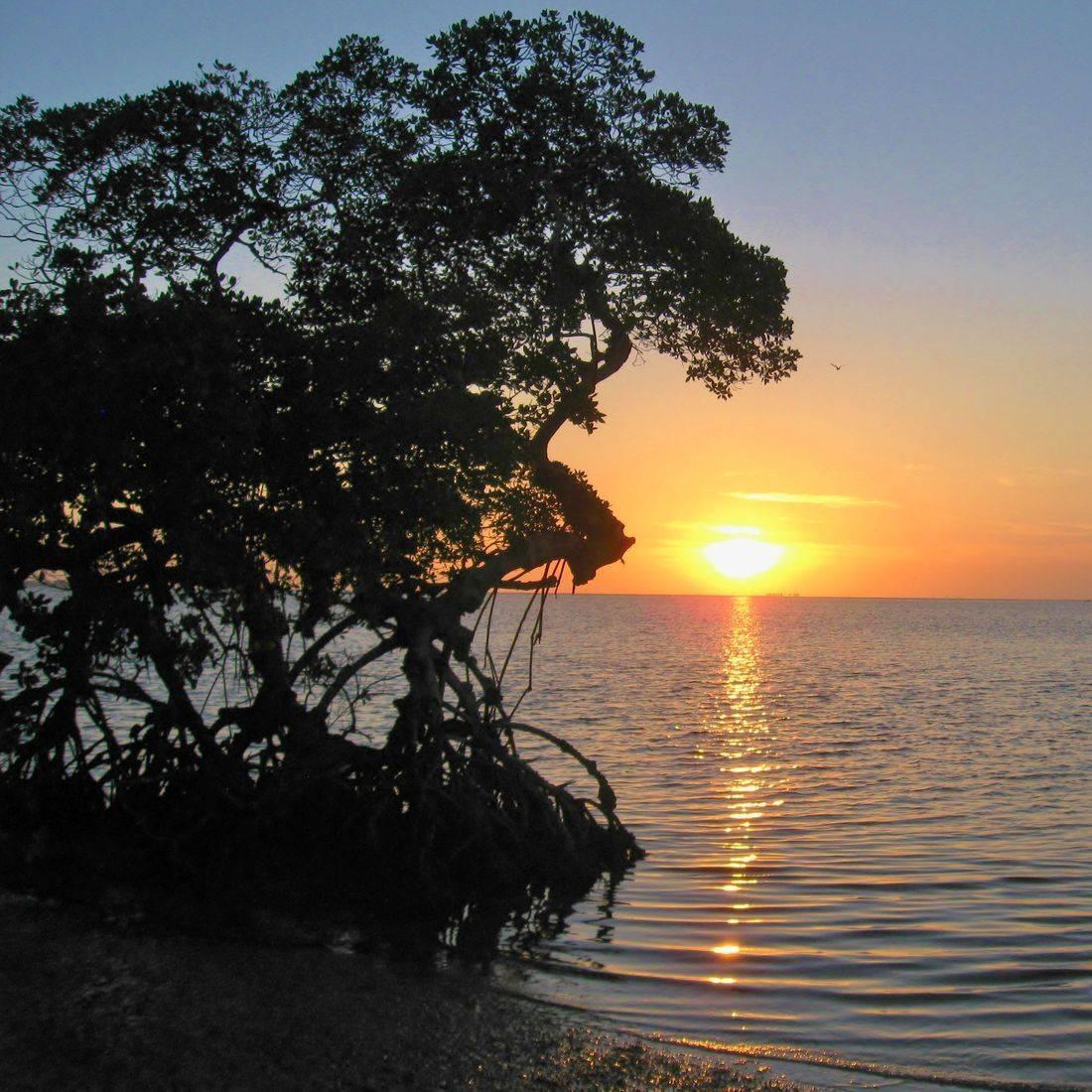 Beach, Sunset, Horizon, Ocean,