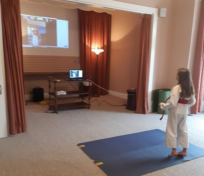 Virtual Kids Karate Classes