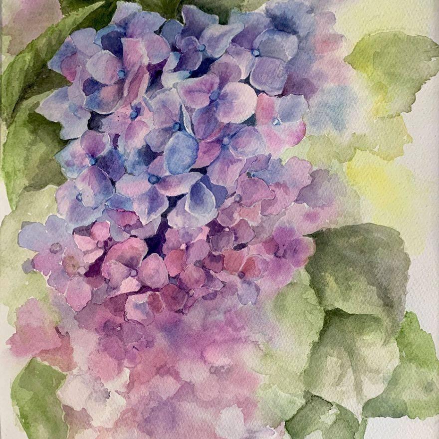 "SBaeckmann - Chrysanthemums - Watercolor - 11""x14"" - Matted in Sleeve - $300"