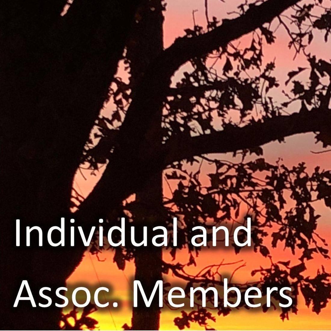 Individual and Associate Members