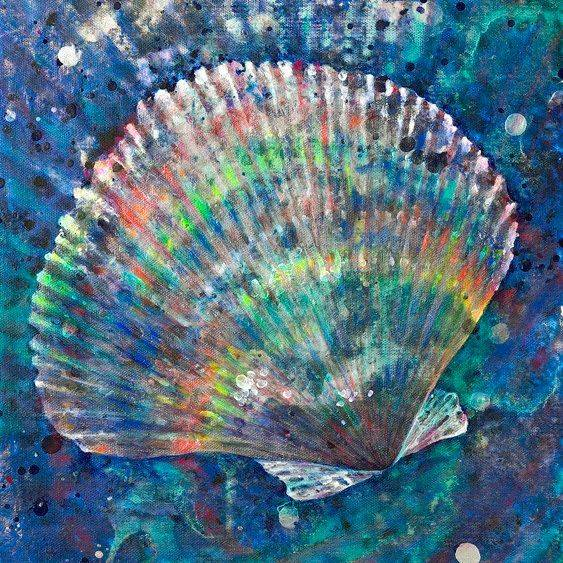 NCooper - Scallop Rainbow Shell - Giclee - 12x16 - $119