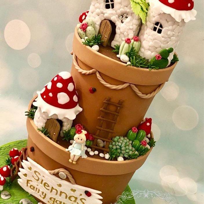 Fairy Flower Pot Birthday Cake House Toadstool Succulent Cacti Ladybug