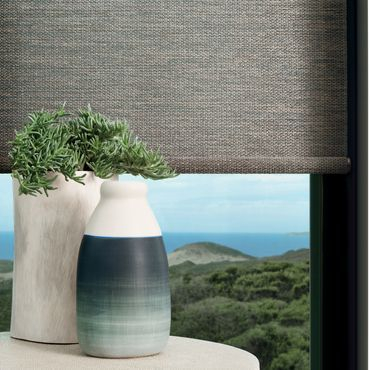 A Hunter Douglas Designer Roller Shade works well with minimalist home decor.