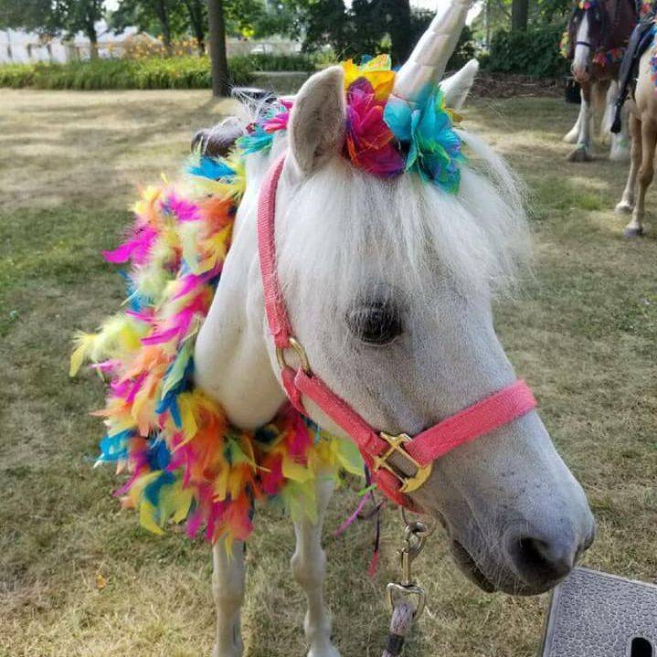 Little girl sitting on a  unicorn