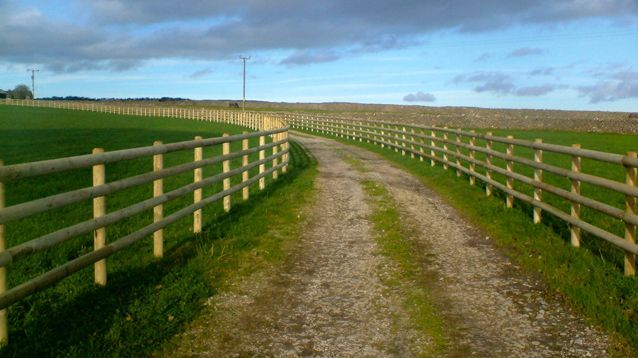Post and Rail Equestrian Fencing for Paddock and Driveways