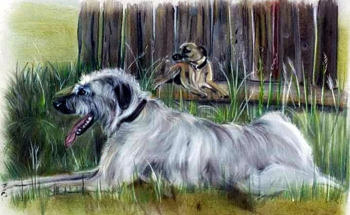 Irish Wolfhound & Friend £65