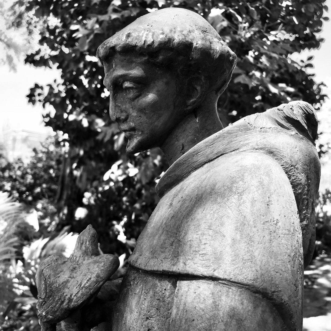 Gardens, Church, Cemetery, Concord, North Carolina, Flowers, Saint, Statue