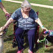 Senior  woman petting donkey and goat