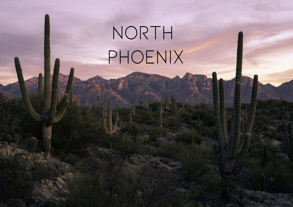 North Phoenix Therapy Therapist Counselor Counseling 85085 85086