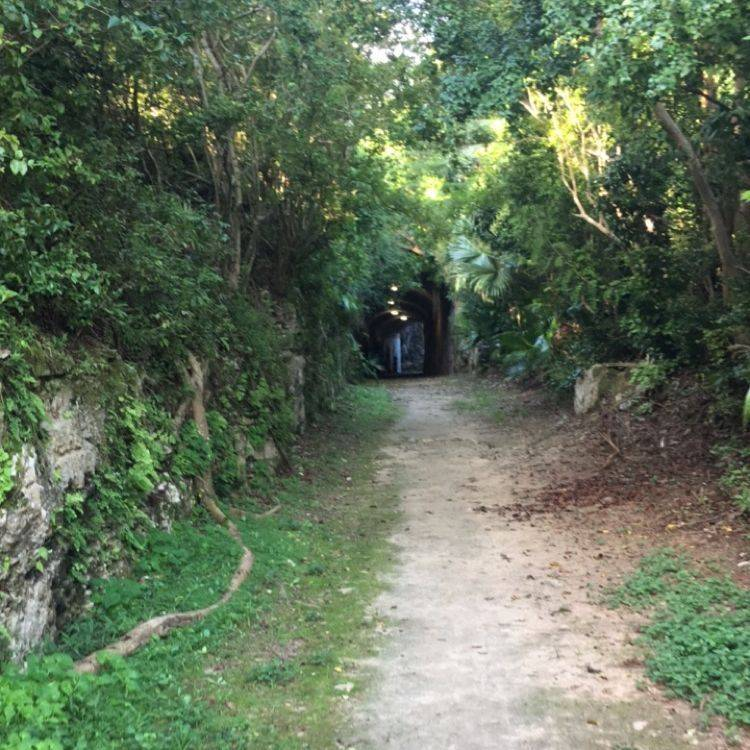 Bermuda Hikes, Bermuda Walks, Free Hiking Trails